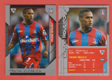 Crystal Palace Wayne Routledge